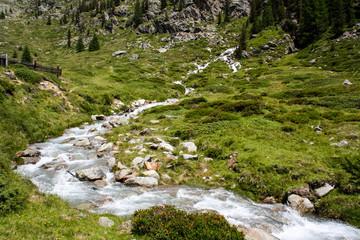 Mountain Creek. Alpine view