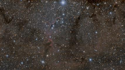 Elephant trunk nebula (IC 1396) in Cepheus constellation