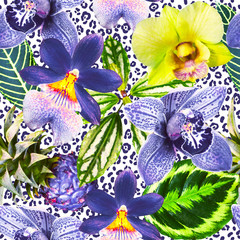 Bright orchid flowers with green exotic leaves on the leopard skin background. Tropical pattern. Photo collage with exotic plants. Yellow, blue and green colors.