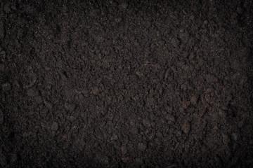 Fototapeta close up of black soil obraz