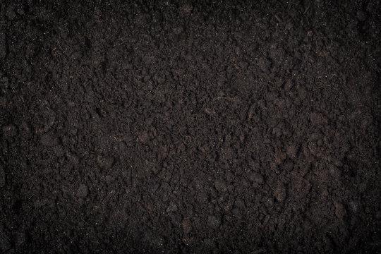 close up of black soil