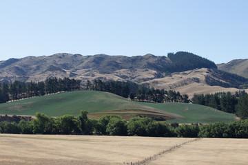 Distant mountains behind ridge
