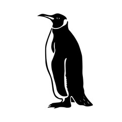 black penguin vector illustration
