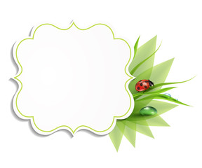 grass background, frame with leaves