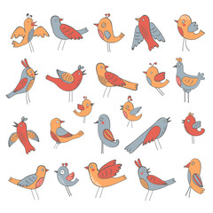 Cute collection of funny birds