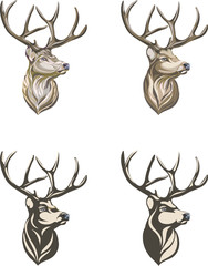 Deer, deer drawing, portrait, vector, illustration, color, silhouette