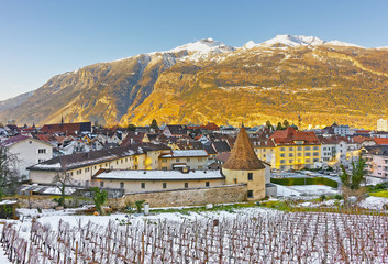 Vineyard and Alps in Chur at sunrise