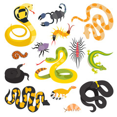 Vector flat snakes collection isolted on shite background