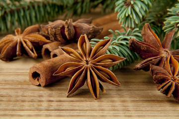 spices and branch of Christmas tree