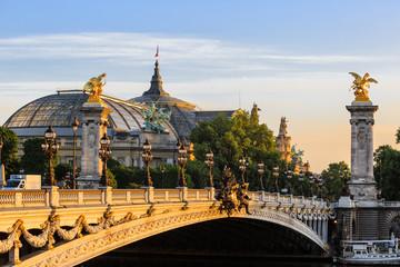 Alexander III bridge att dawn in Paris  Fototapete