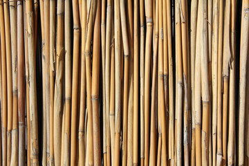 background from the set of rods /fence background of many small wooden sticks