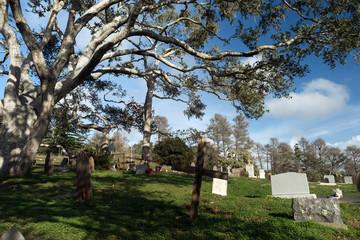 Primitive Headstones Rural Cemetery Wood Marker