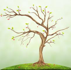 Illustration of summer cherry tree