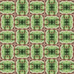 Seamless cactus pattern, abstract simple background