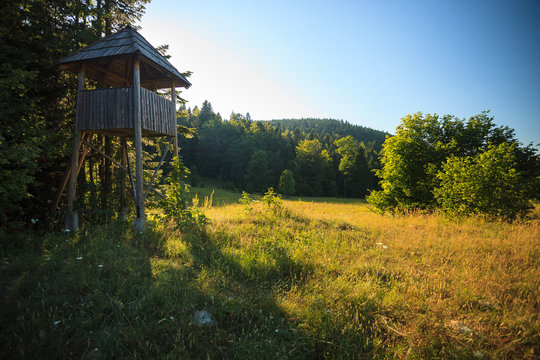 Abandoned lookout tower for hunting in national park Tara in Serbia