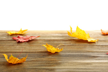 Yellow autumn leaves on wooden table, isolated on white