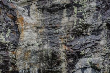 Lichen on Rock Wall