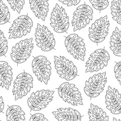 Vector leaf seamless pattern. Black and white doodle background.