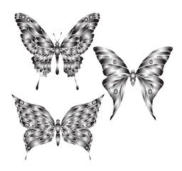 Hand drawn ornamental butterfly set illustration with decorative