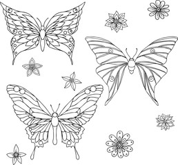Hand drawn ornamental butterfly set outline illustration with decorative ornaments