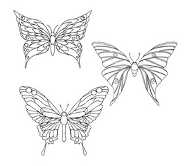 Hand drawn ornamental butterfly set outline illustration with de