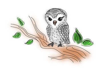 Owl sitting on twig of tree