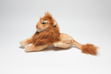 Lion toy white backdrop