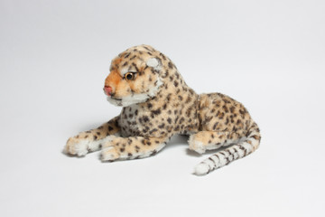 Leopard toy white backdrop