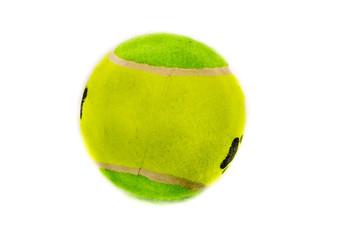 balle de tennis pour chien, jouet