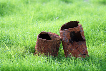 """couple of rusty can on young grass,like a sign of """"forever love"""""""