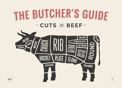 Cut of beef set. Poster Butcher diagram and scheme - Cow. Vintage typographic hand-drawn. Vector illustration.