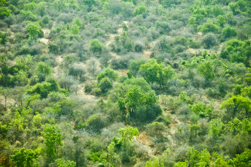 aerial view of wilderness in South Sudan