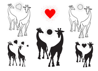 Set of silhouettes of giraffes. Black on white background