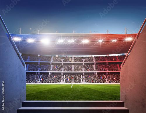 Wall mural Stadion Frankreich Durchgang farbiges Licht