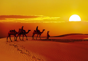 Poster de jardin Desert de sable Beautiful sunset at desert , Jaisalmer,India