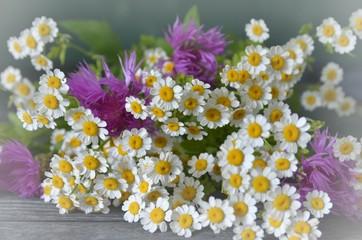 Frühlingsdekoration aus bunten Frühlingsblumen auf Holz - Wildblumen