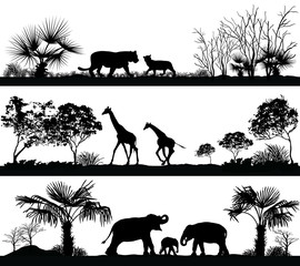 wild animals (giraffe, elephant, lion) in different habitats