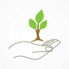 Hand holding a young tree symbol