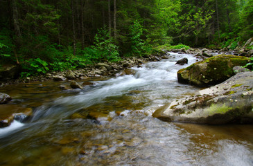 Foto op Aluminium Rivier Mountain river