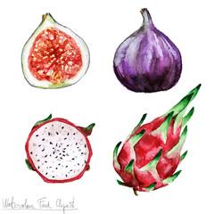 Watercolor Food Clipart - Pitaya and Fig