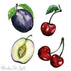 Watercolor Food Clipart - Plum and Cheery