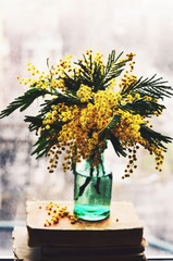 Still life with mimosa in green bottle on a window sill