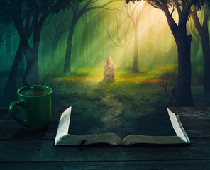 Wall Mural - Reading in the forest