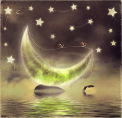 Illustration of orca on a starry night background with moon
