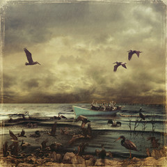 Oil flood in the sea. Rescue of pelicans