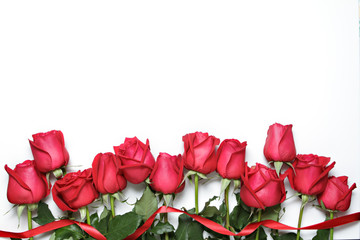 Red roses with ribbon on white background. Valentine's Day, congratulations.