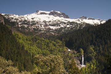 Glacier Melt Creates Waterfall North Cascade Mountains