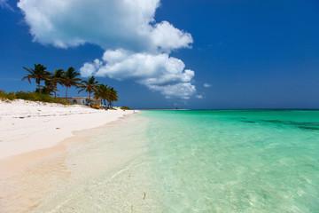 Wall Mural - Beautiful tropical beach at Caribbean