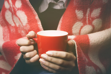 woman and tea and blanket