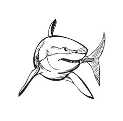 shark, black and white stylized illustration